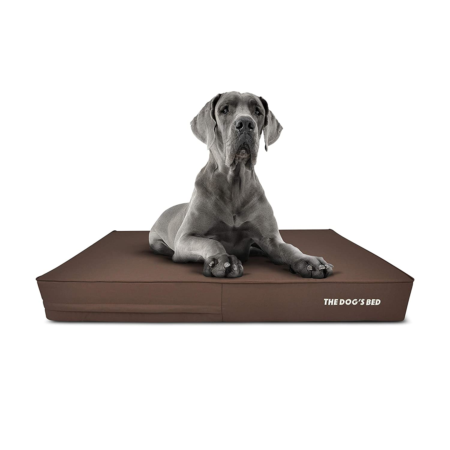 Brown with Brown Trim XXL Bed (54x36x6) Brown with Brown Trim XXL Bed (54x36x6) The Dog's Bed, Premium Plush Orthopedic Waterproof Memory Foam Dog Beds, 5 Sizes 8 colors  Eases Pet Arthritis, Hip Dysplasia & Post Op Pain, Quality Therapeutic & Supportive