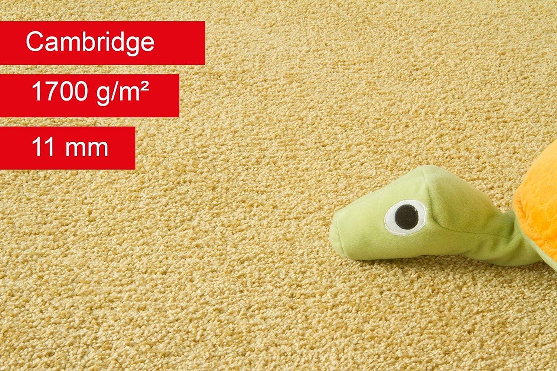 Steffensmeier Teppichboden Cambridge Meterware Auslegware f/ür Kinderzimmer Wohnzimmer Schlafzimmer Gold Gr/ö/ße: 100x100 cm