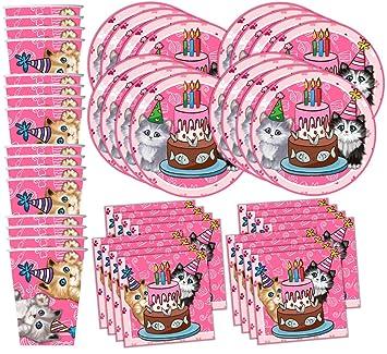 Amazoncom Kitty Cat Pink Kitten Birthday Party Supplies Set