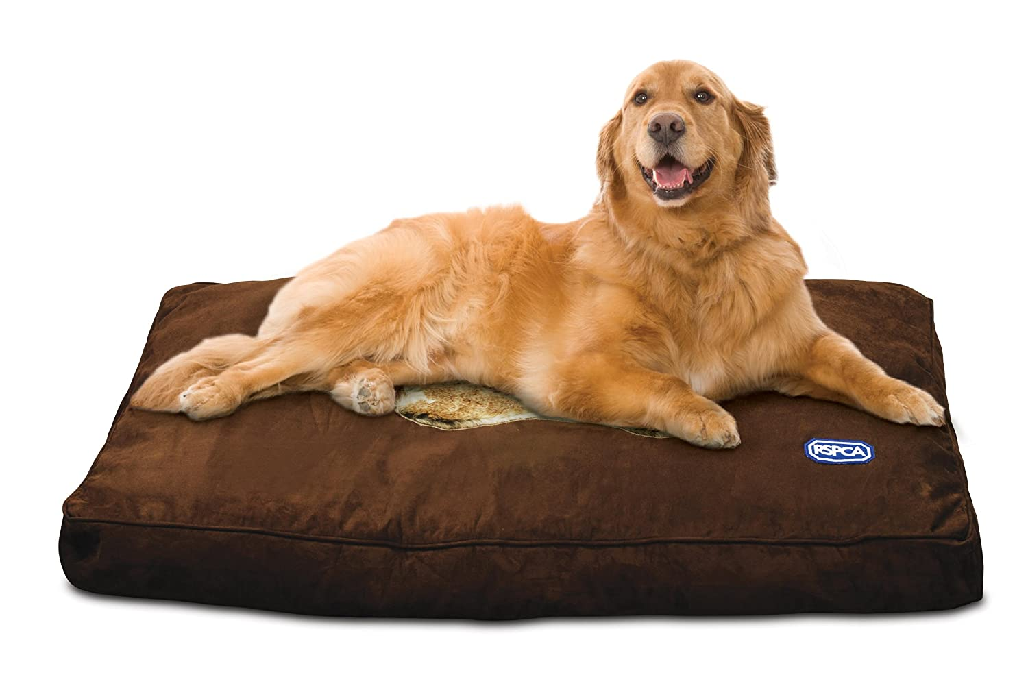 pet dog suede extra amazon cuddle k strategist large on h foam cooling best shag cube article beds bed products