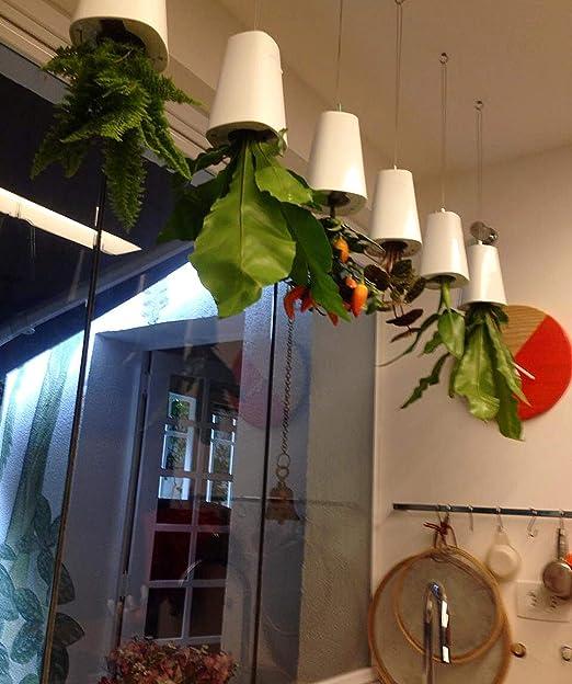 Smartlife al revés cielo maceta maceta autorriego para colgar macetas casa jardín decoración tamaño mediano (color blanco): Amazon.es: Jardín