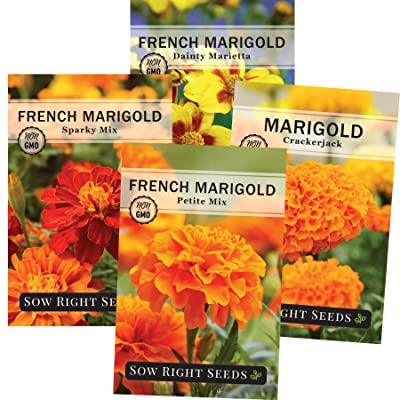 Sow Right Seeds - Marigold Seed Collection for Planting, Crackerjack, Sparky, Dainty Marietta, and Petite Mix Marigolds to Plant in Your Flower Garden; Non-GMO Heirloom Seeds; Wonderful Gardening Gift : Garden & Outdoor