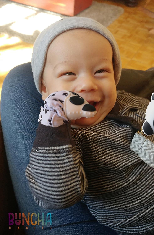 Amazon.com: ¡Nuevo. Panda paws- alivio del dolor dentición ...