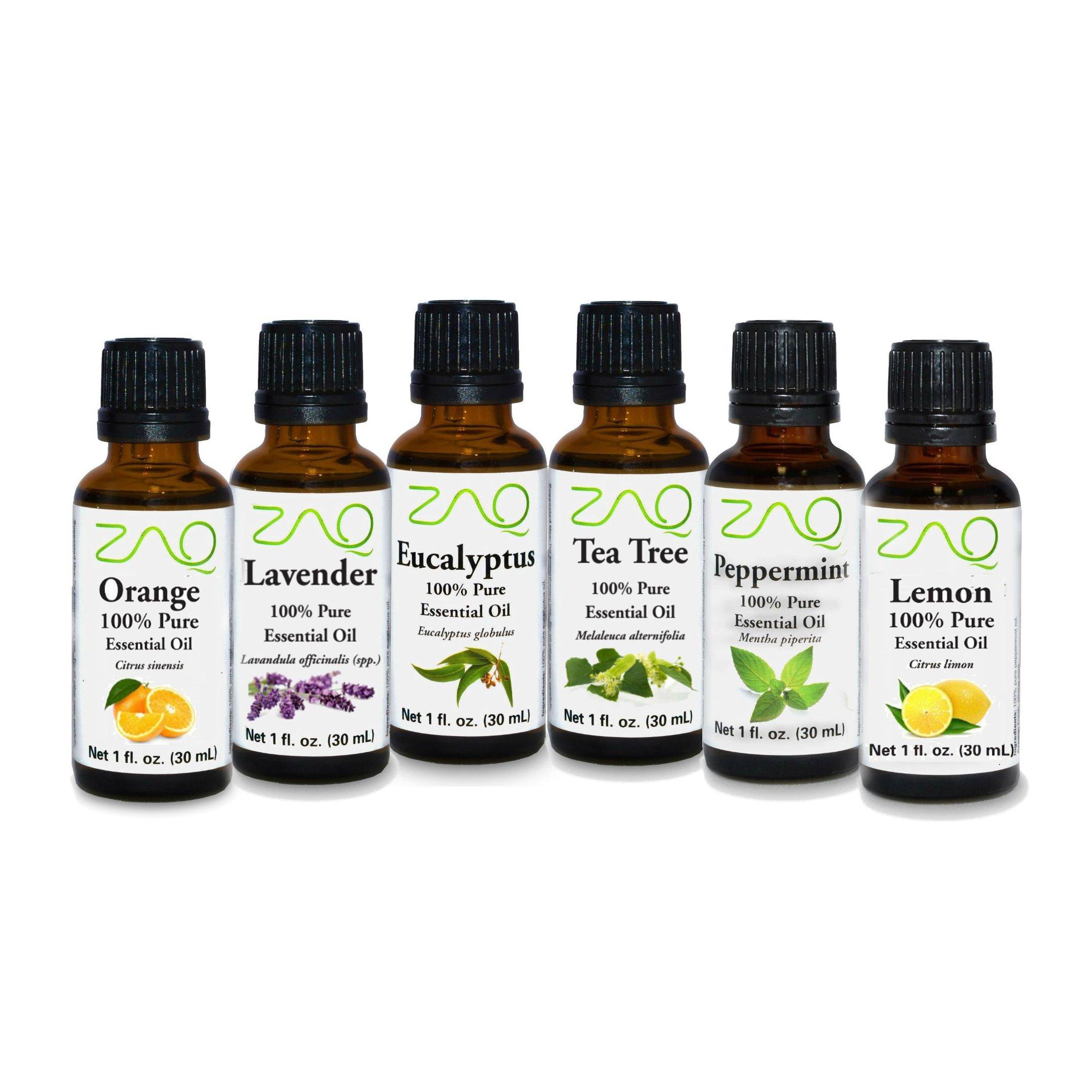 ZAQ Aromatherapy Top 6 100% Pure Therapeutic Essential Oil Gift Set- 1 Oz (Lavender, Tea Tree, Eucalyptus, Lemon, Orange, Peppermint)