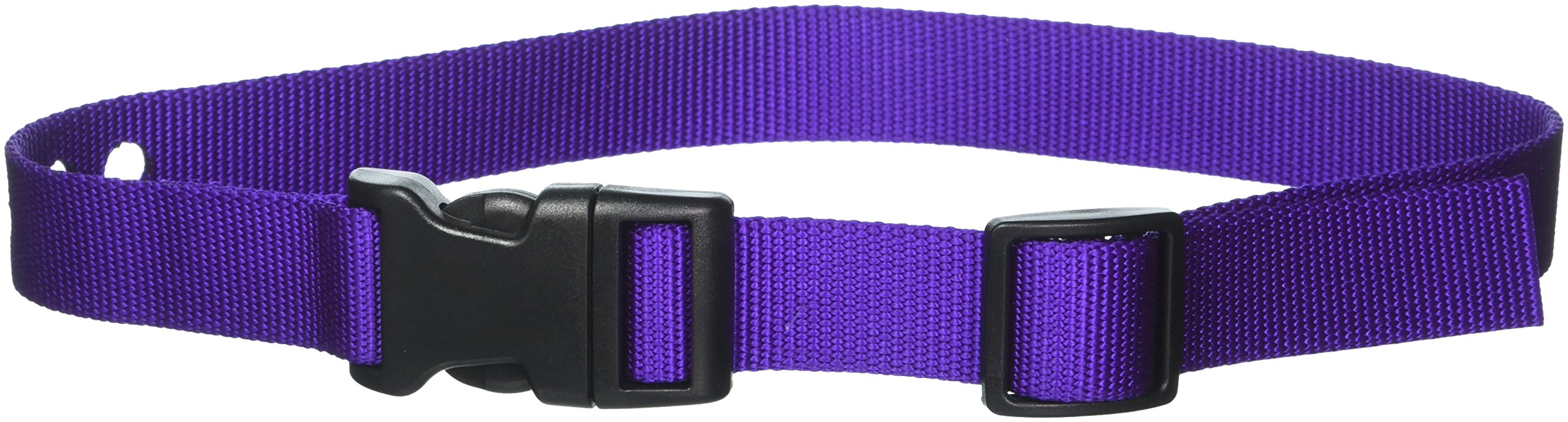 Grain Valley 1'' Replacement Strap, Color: Purple. Sold Per Each. Fits Most PetSafe Bark Collars and Many Containment Collars. (No-Bark Collars / Accessories)