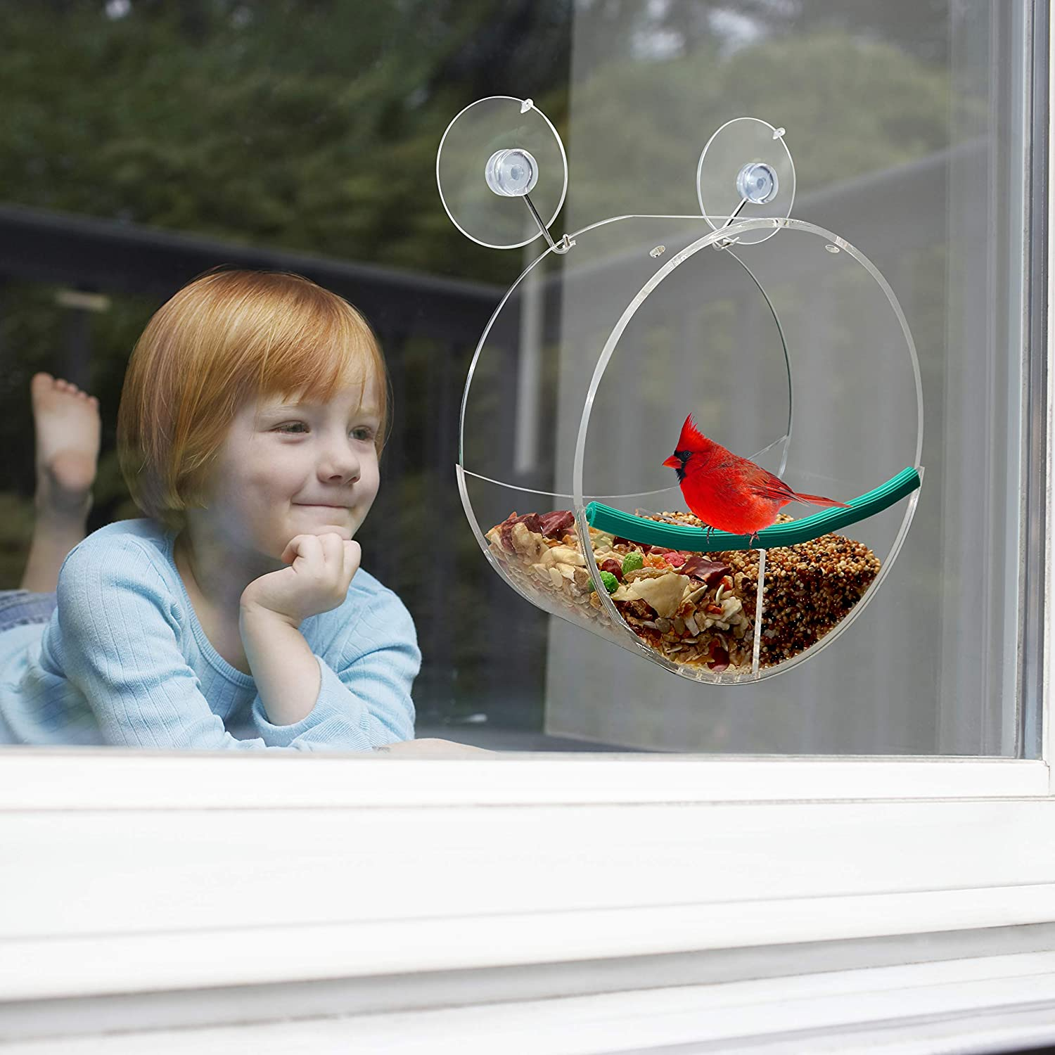 Birdious Window Bird Feeder