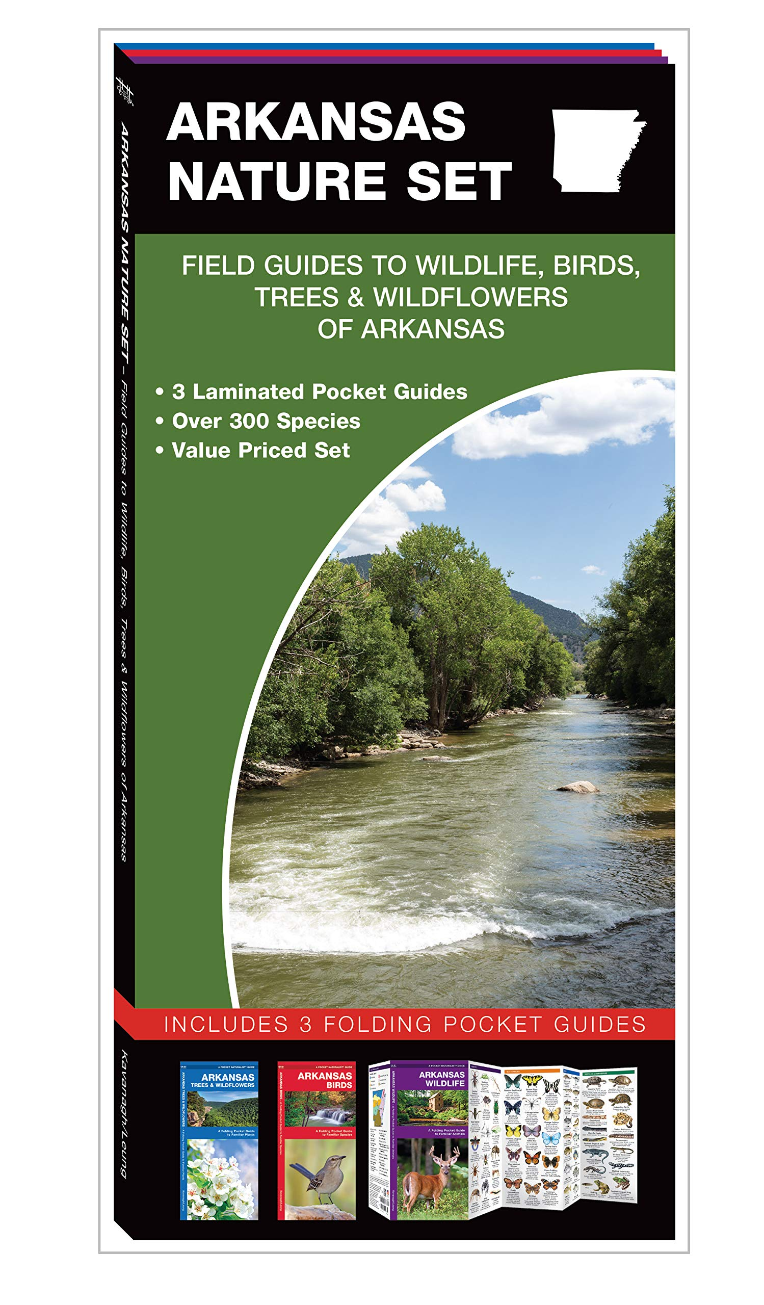 Read Online Arkansas Nature Set: Field Guides to Wildlife, Birds, Trees & Wildflowers of Arkansas pdf epub