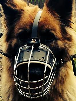 Nueva cesta de alambre de metal perro Bozal para pastor alemán ...