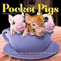 Pocket Pigs Mini Calendar 2020