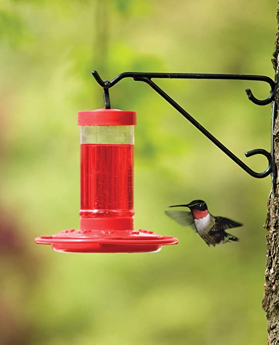 First-Nature-993051-546-Hummingbird-Feeder