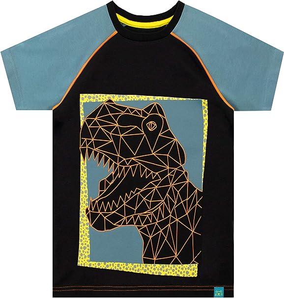 Harry Bear Camiseta de Manga Corta para niños Dinosaurio: Amazon.es: Ropa y accesorios