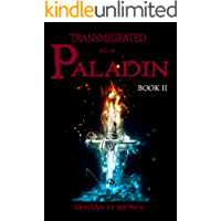 Transmigrated Paladin (LitRPG): Book Two