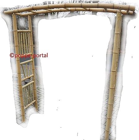 Arco Rose 1 portería de bambú enrejado: Amazon.es: Jardín