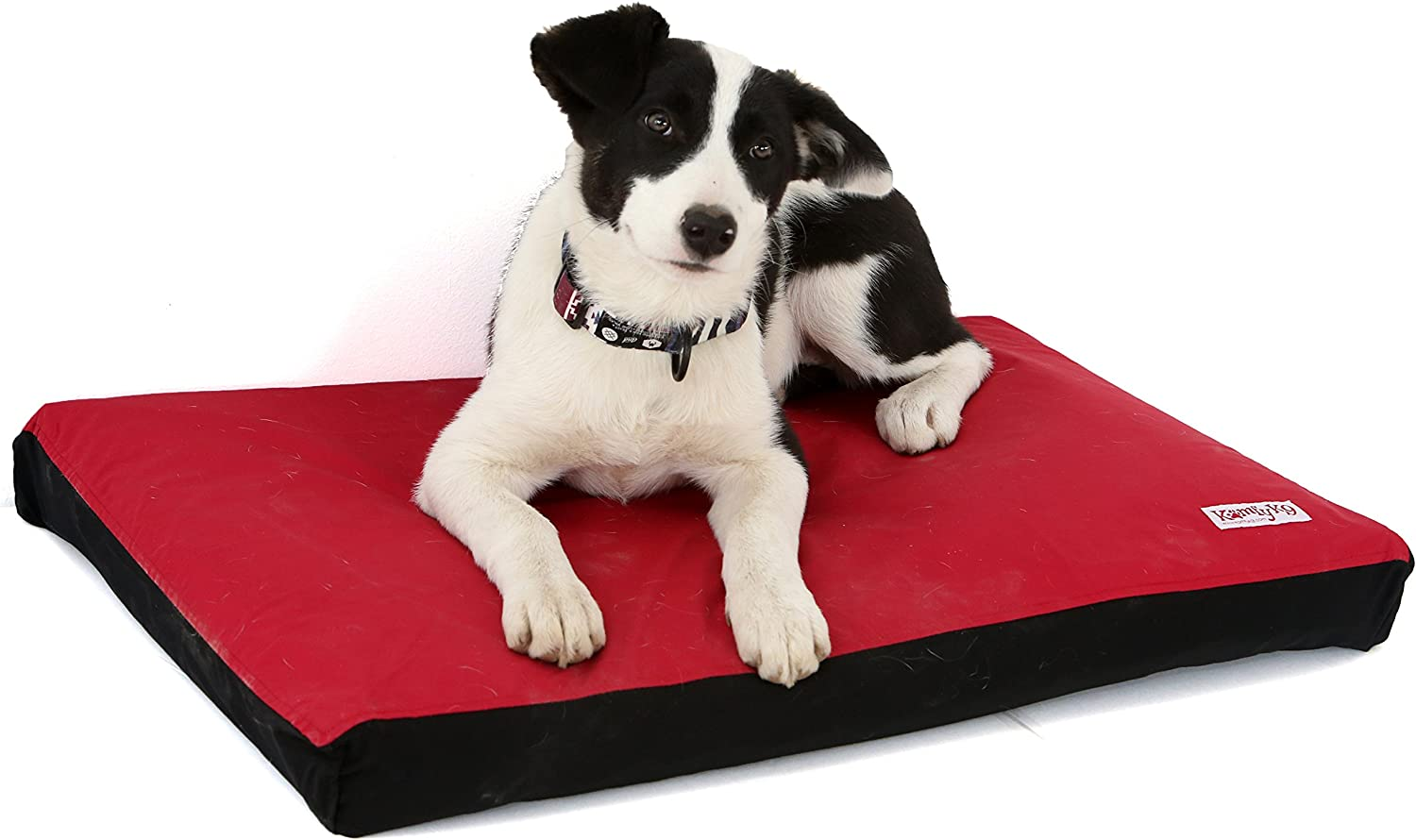 Waterproof I Odor Proof Crate Mat Easy Removable Cover – Great Outdoor Bed -Self Inflates – Carry Case For Travel