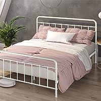 Zinus Florence Metal Platform Bed Frame / Mattress Foundation / No Box Spring Needed, Twin
