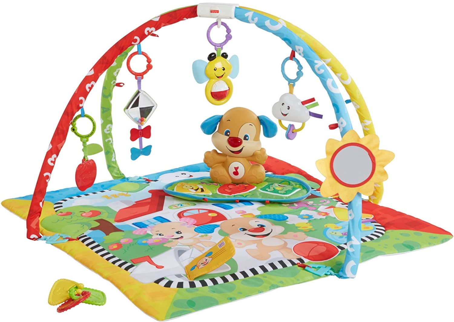 Fisher-Price Puppy 'n Pals Learning Gym   B06ZZNBQGD