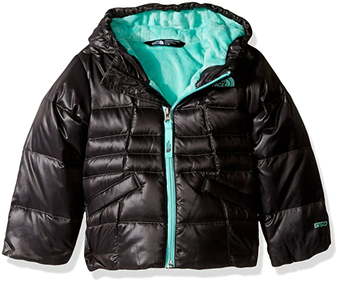 257b068fd2c1 Amazon.com  The North Face Little Girls  Toddler Moondoggy 2.0 ...