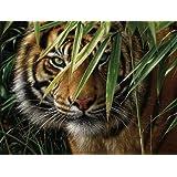 Reeves - Pintar por Números - Set de pintura grande, diseño de tigre