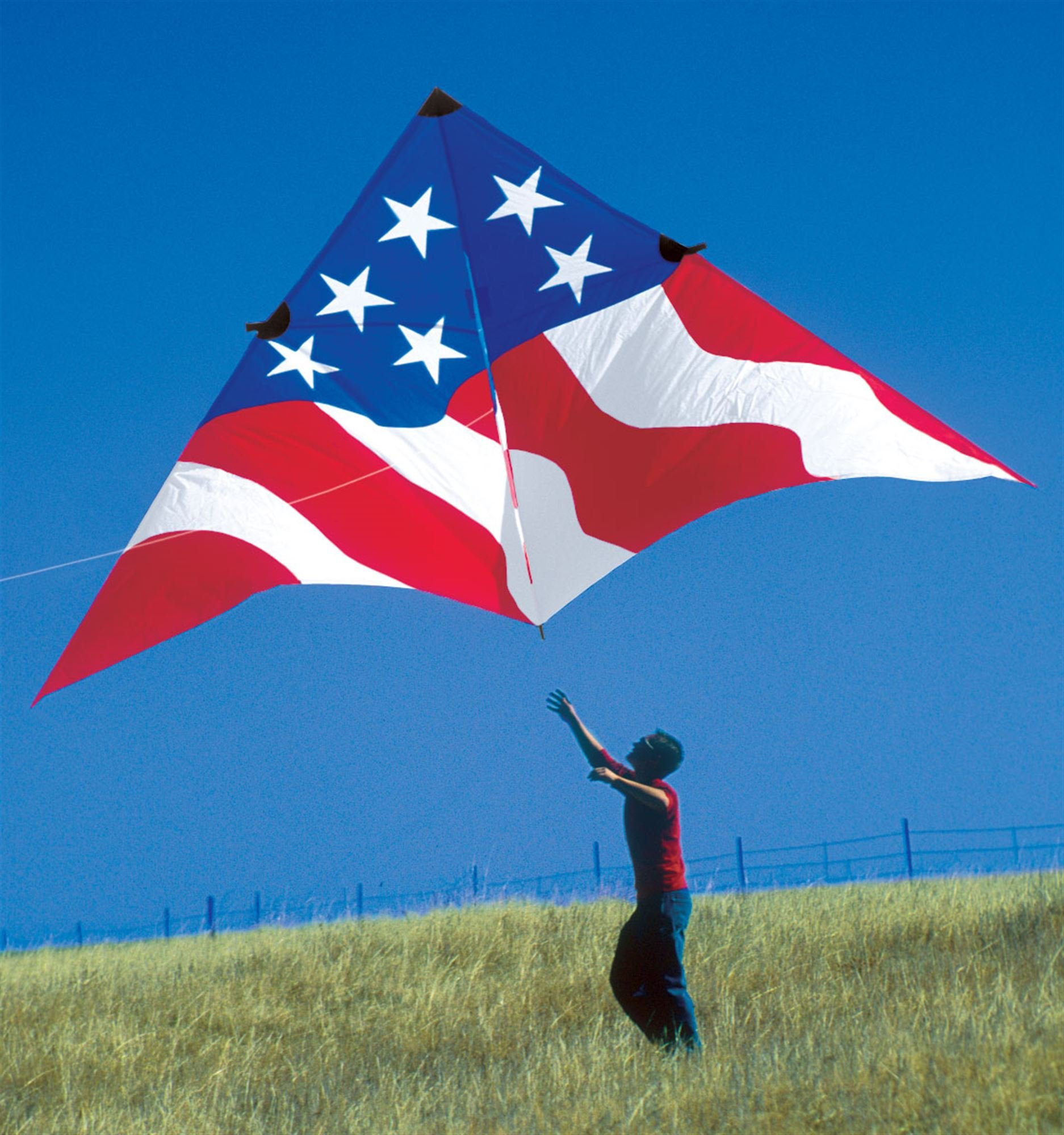 19ft. Patriotic Delta Kite by Premier Kites