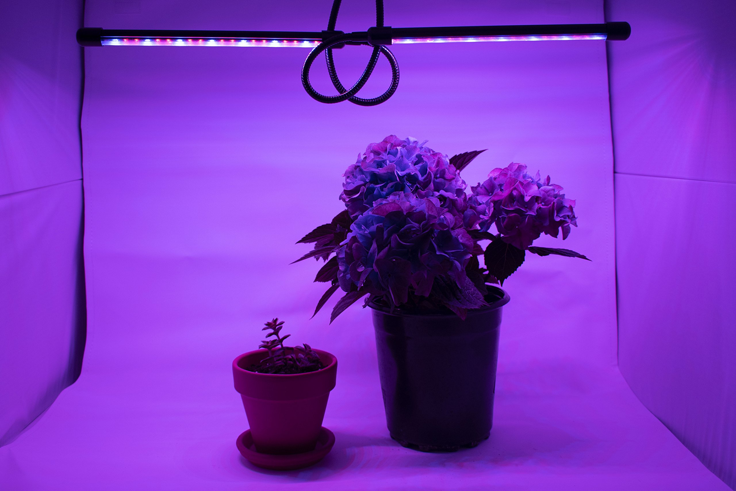 LED Grow Light Kit RGB fixture with clamp (grow light blue, red and purple) by LED Grow Light (Image #6)