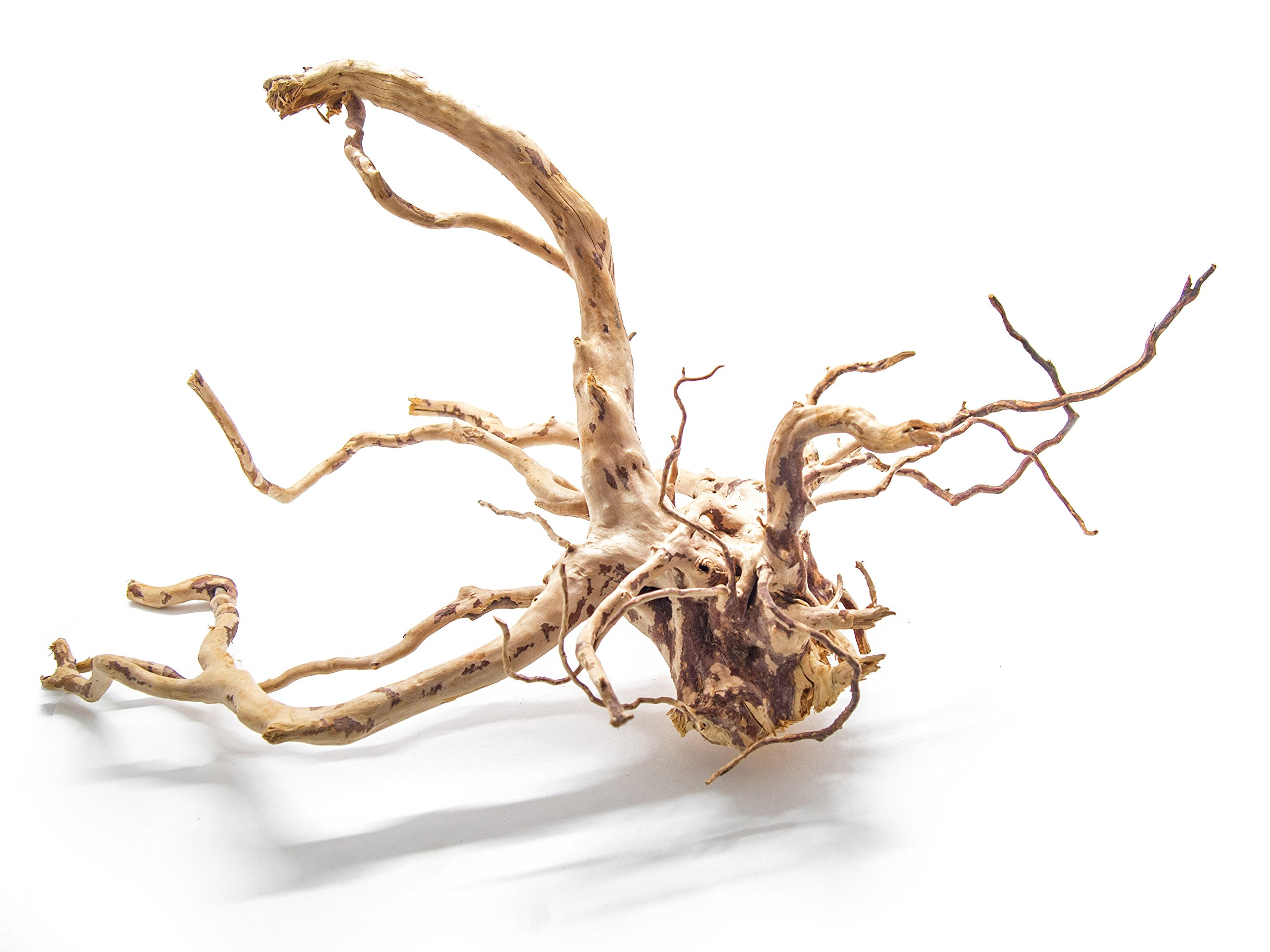 Aquatic Arts 1 X-Large Piece of Spider Wood aka Azalea Natural Aquarium Driftwood, 16-20''