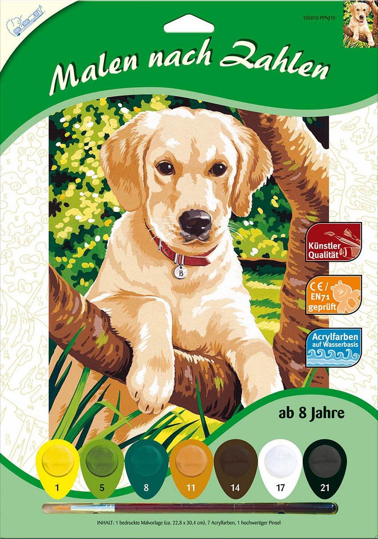 Mammut PPPNJ10 - Malen nach Zahlen klein Junger Hund: Amazon.de ...