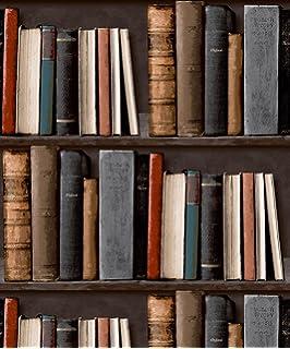 LIBRARY BOOKSHELF REALISTIC BOOKCASE WALLPAPER POB 33 01 6