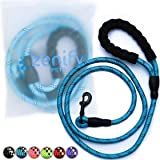 Zenify Pets Dog Lead - Durable Strong Chew Resistant Slip Lead Nylon Rope Padded Handle Mountain Climbing Harness Pet Puppy Training Slipknot Leash for Walking [1/2 inch 1.2cm Thick] (Blue 4ft)