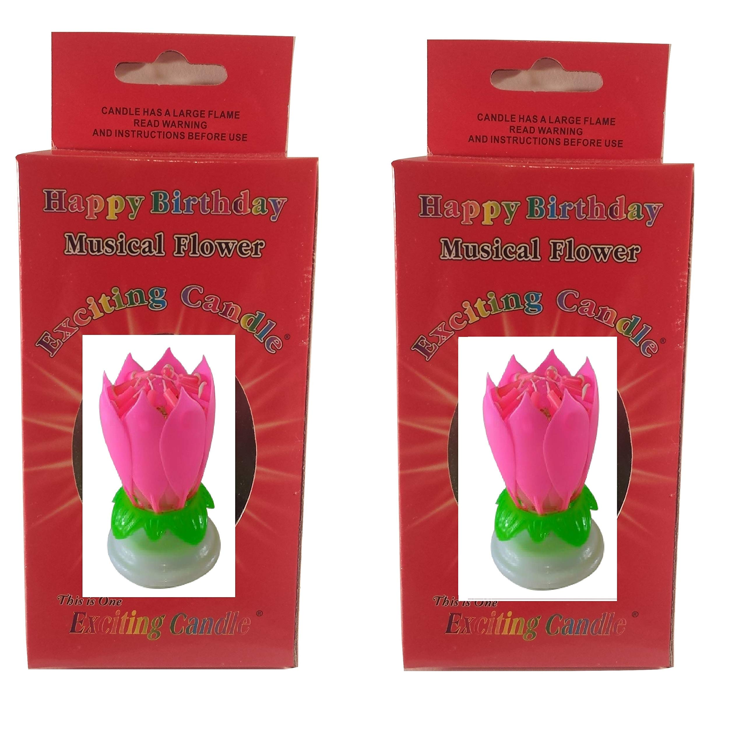 Birthday Candle Two Pack (Pink Pink)