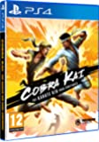 Cobra Kai: The Karate Saga Continues (PS4)