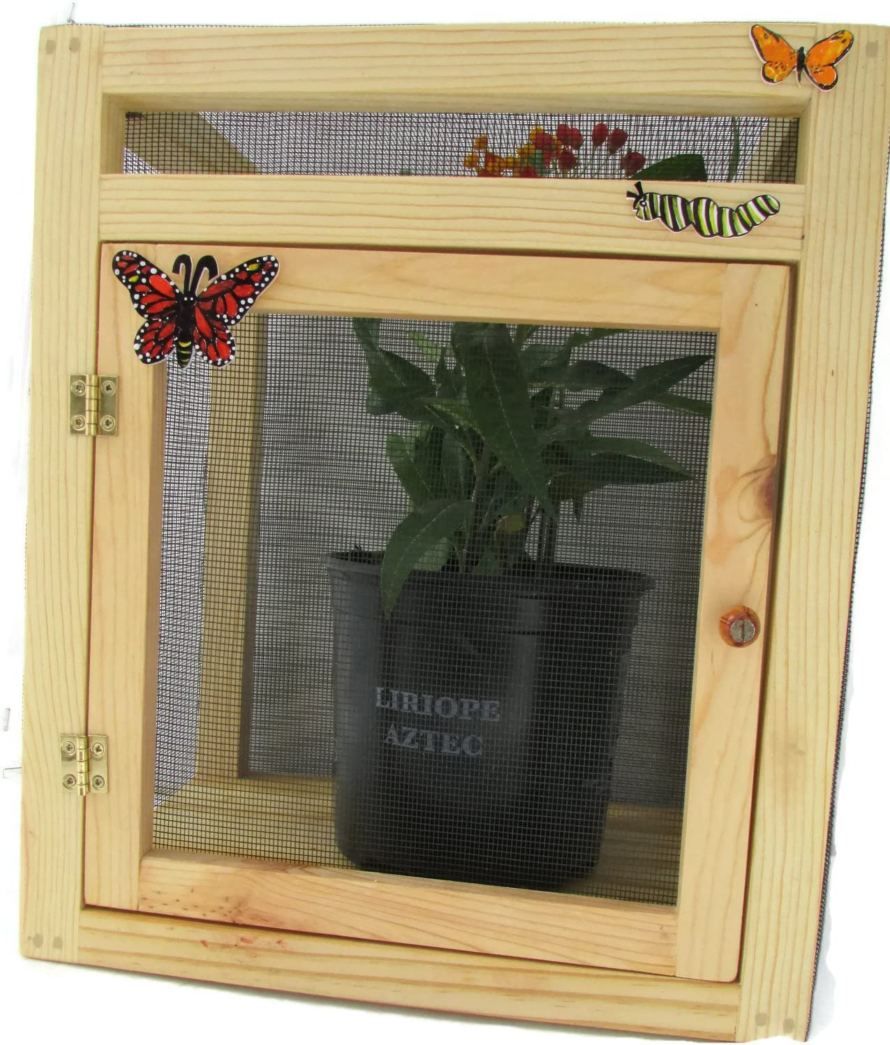 Child-Size Butterfly Screenroom Cage & Nursery Habitat