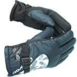 Alexvyan Men's Snow Proof Warm Winter Cycling Bike Motorcycle Protective Riding Gloves (Blue, Regular)