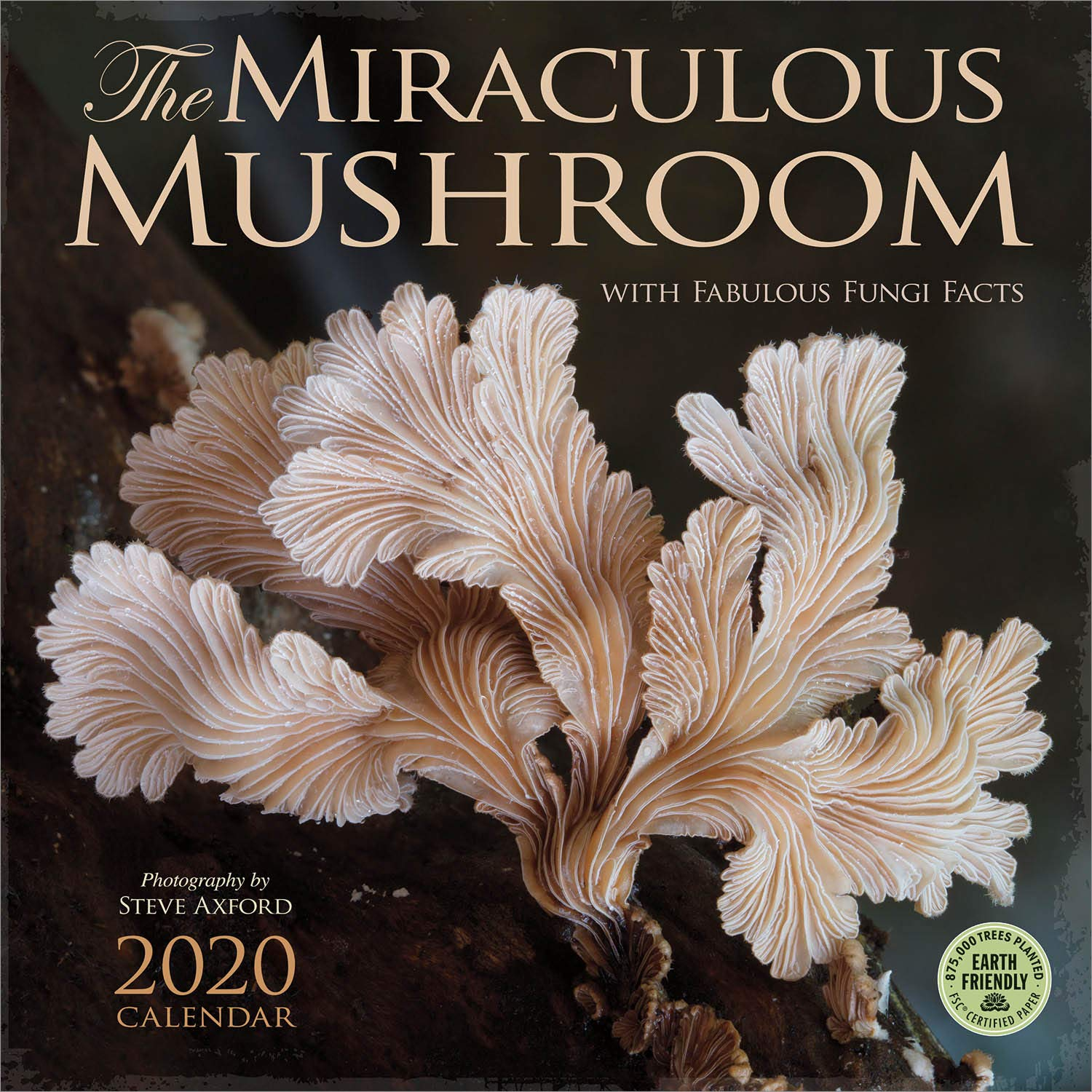 The Miraculous Mushroom 2020 Wall Calendar: With Fabulous Fungi Facts by Amber Lotus Publishing
