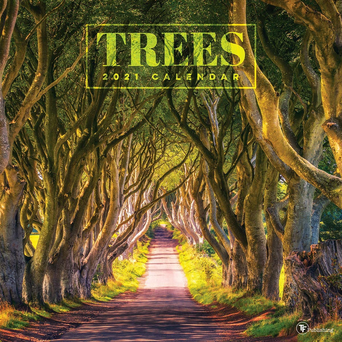 """TF PUBLISHING 2021 Trees Monthly Wall Calendar - Scenic Landscape Photography - Appointment Tracker - Contacts and Notes Page - Home or Office Planning/Organization - Premium Gloss Paper 12""""x12"""""""