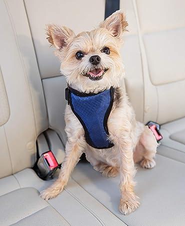 Dog Car Safety >> Petsafe Deluxe Car Safety Dog Harness Adjustable Crash Tested Dog Harness Car Safety Seat Belt Tether Included