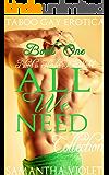 All We Need : Book One: Taboo Gay Erotica