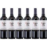 Casillero del Diablo Reserva Merlot Wine, 75 cl (Case of 6)