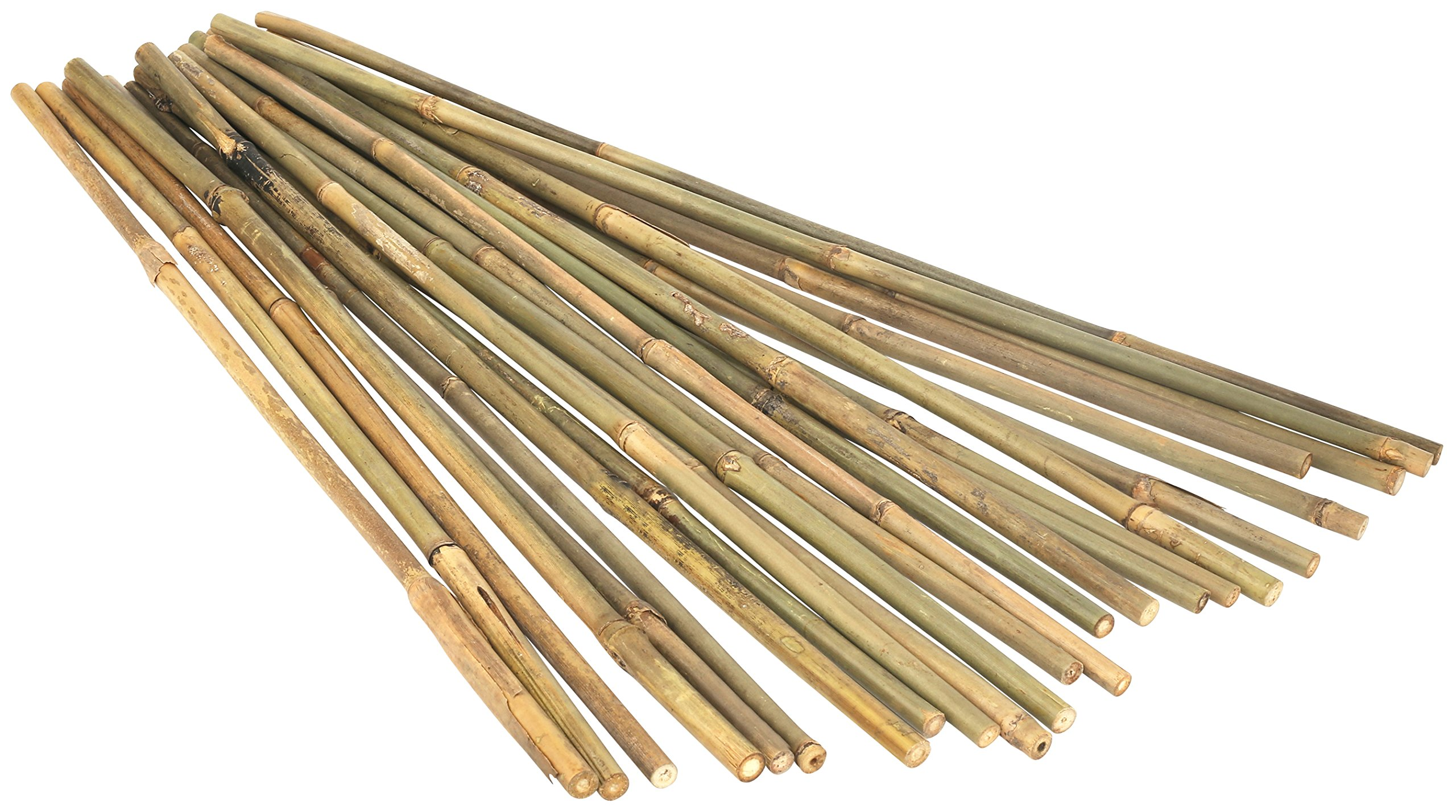 Kaya Collection 1260 1/2 Inch Bamboo Stake Poles-12 Pack, 6 Feet, Natural