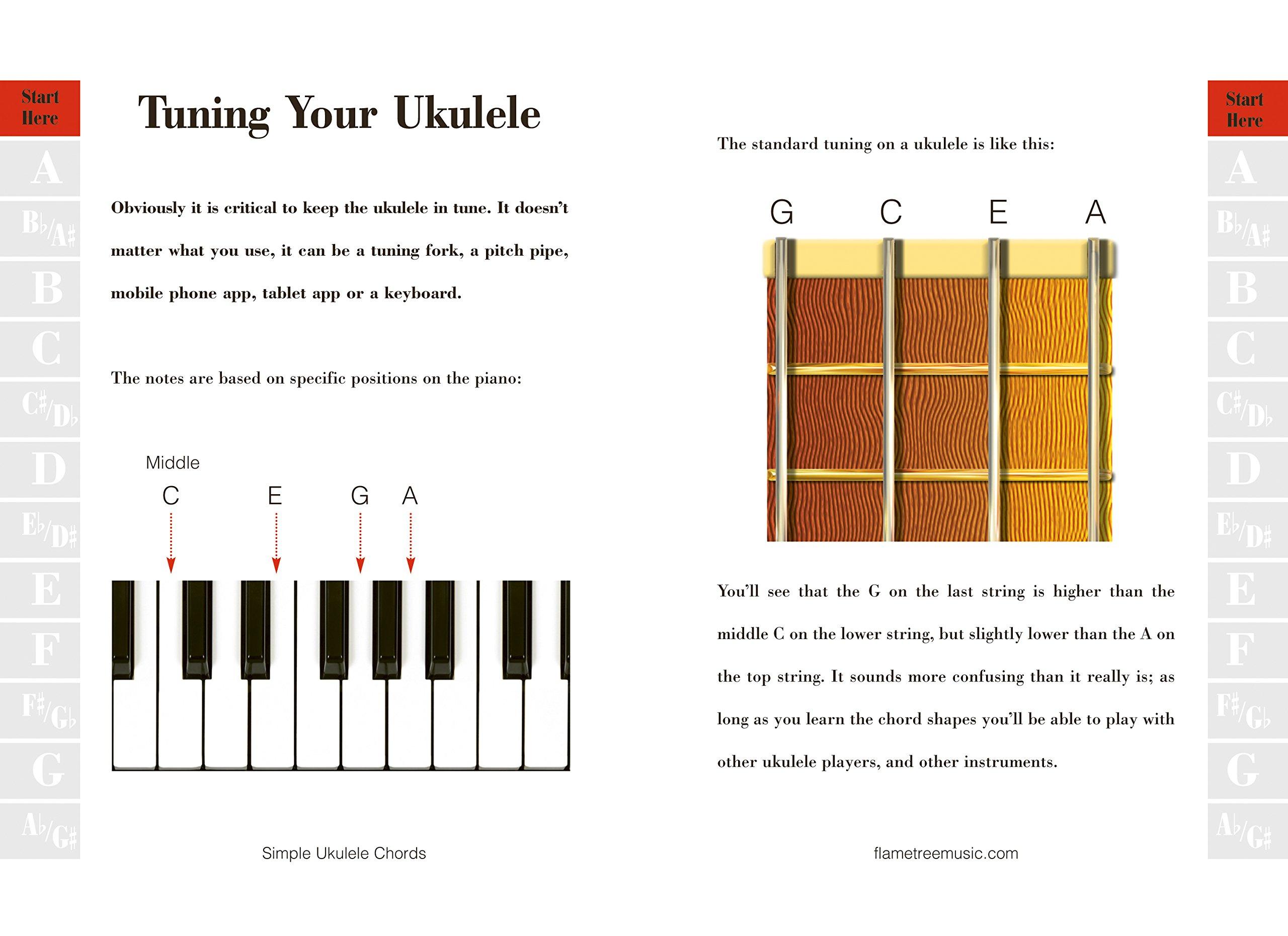 Amazon simple ukulele chords easy to use easy to carry the amazon simple ukulele chords easy to use easy to carry the essential playing companion 9781783613168 jake jackson books hexwebz Images