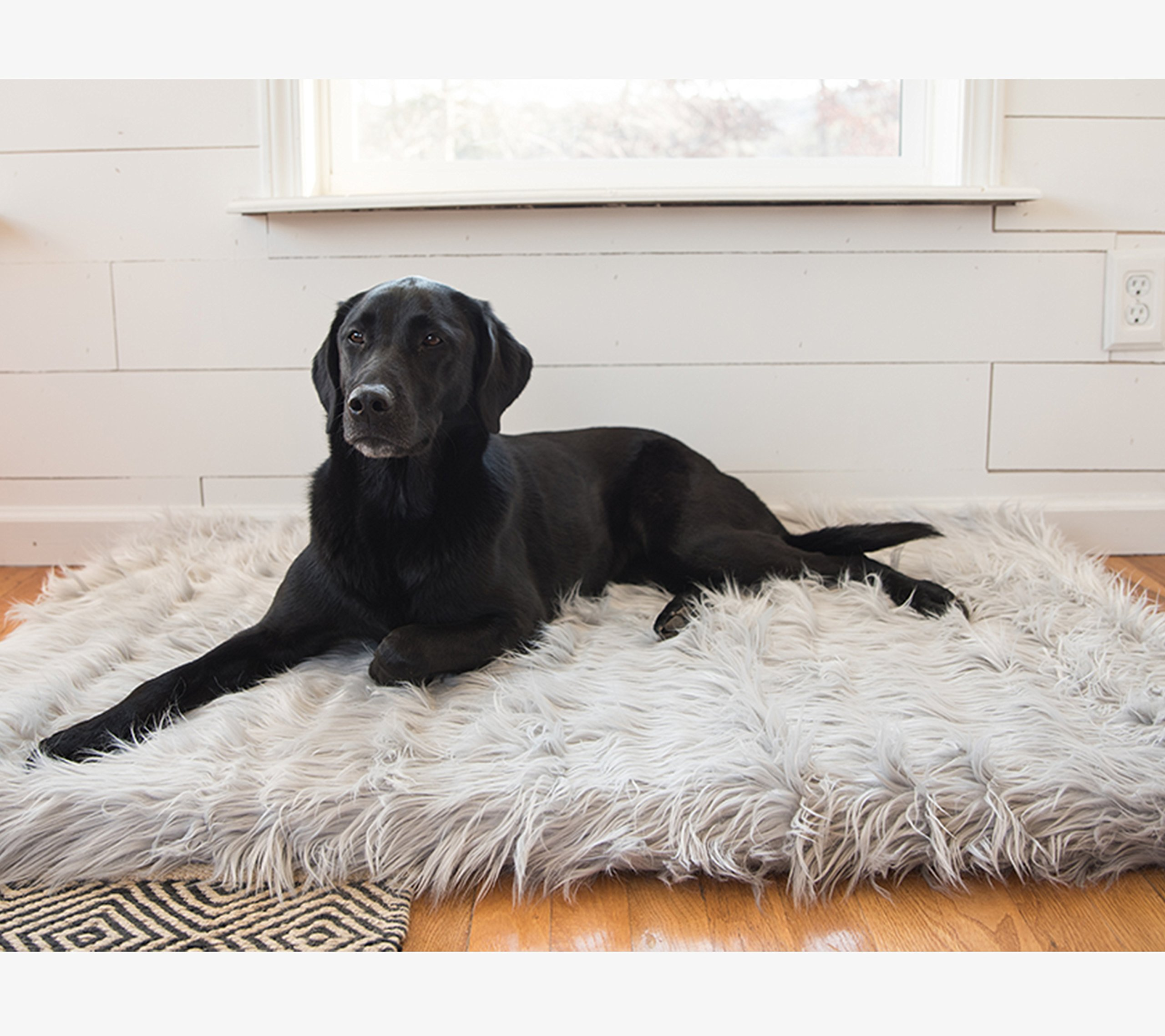 PupRug Faux Fur Memory Foam Orthopedic Dog Bed (Giant - 60'' L x 35'' W, Gray Rectangle) by Treat A Dog (Image #1)