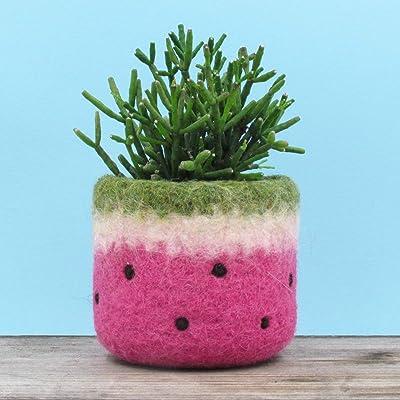 Felt vase/cactus vase/watermelon planter/Pink watermelon/home decor