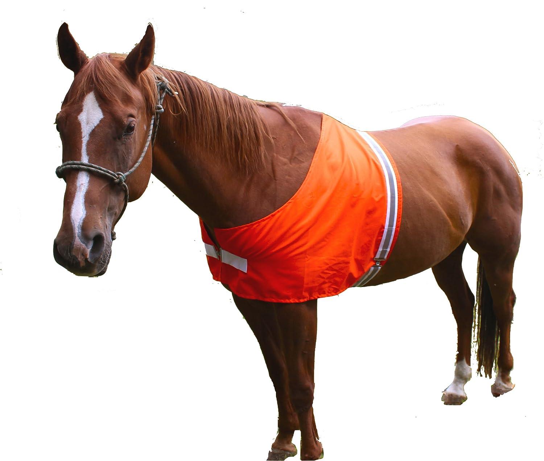 Dog Not Gone Visibility Products Safety Horse Vest, Large/X-Large HORSEVEST-LG/XLG