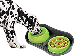 Because of Paws Non-Skid Pet Bowl Tray - with 2 Slow Down Bowls Set - For Small to Medium Dogs - Protects Floor from Food and Water