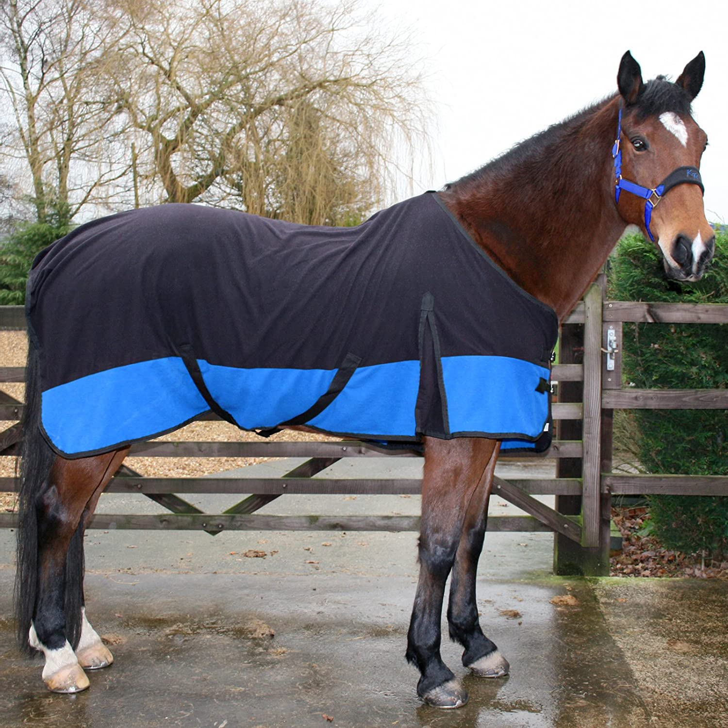 Foal 36 Blue and Black tigerbox Two Tone Soft Horse Fleece Cooler Rug