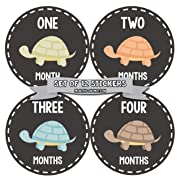 Months In Motion Gender Neutral Baby Month Stickers | Monthly Milestone Sticker for Boy or Girl | Shower Gift | Newborn Keepsakes | Unisex | Turtles