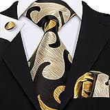 Barry.Wang Mens Ties Novelty Silk Tie Pocket Square Cufflinks Set Woven Designer