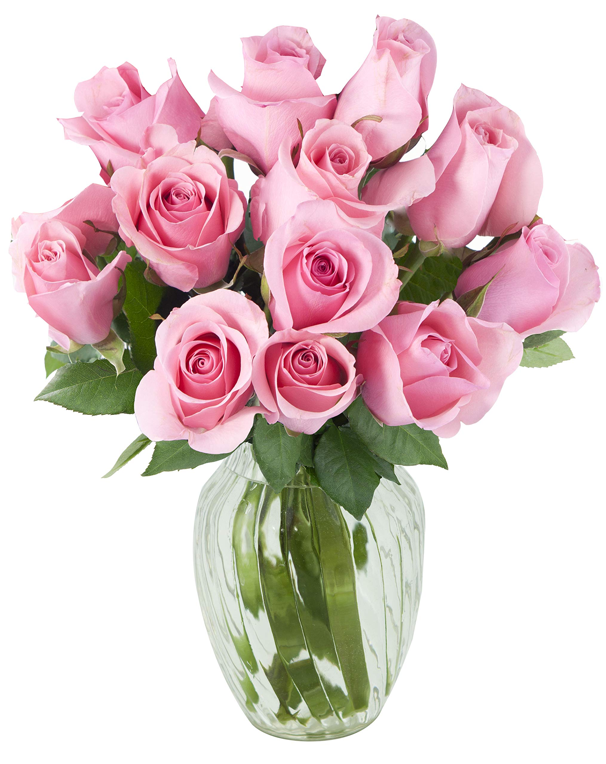 KaBloom Bouquet of 12 Fresh Pink Roses (Farm-Fresh, Long-Stem) with Vase