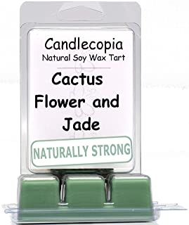 product image for Candlecopia Cactus Flower & Jade Strongly Scented Hand Poured Vegan Wax Melts, 12 Scented Wax Cubes, 6.4 Ounces in 2 x 6-Packs
