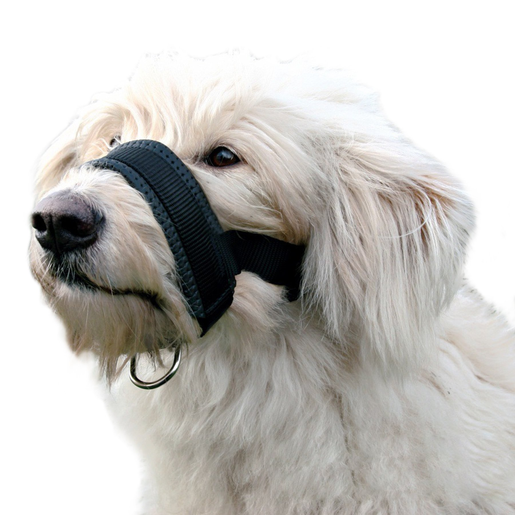 Alfie Pet by Petoga Couture - Jaimy Adjustable Quick Fit Nylon Muzzle - Color: Black, Size: XXL by Alfie (Image #1)