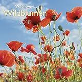 Wildblumen 2018 - Broschürenkalender, Wandkalender, Naturkalender - 30 x 30 cm